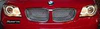 BMW E82 135i Upper Kidney's