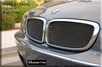 BMW FACELIFT (2006-2008) E65 750 / 760i & E66 750 / 760Li 7-Series  Upper Kidney Grilles