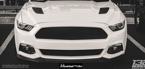 Ford Mustang S550 (2015-2017) Upper ONLY RaceMesh Grille One-Chamber Version - Gothic Style Weave