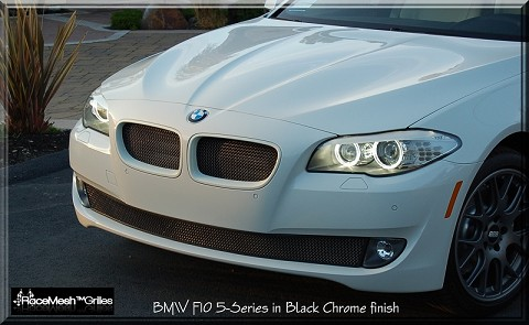 BMW F10 Lower Valance  (2009-2013)
